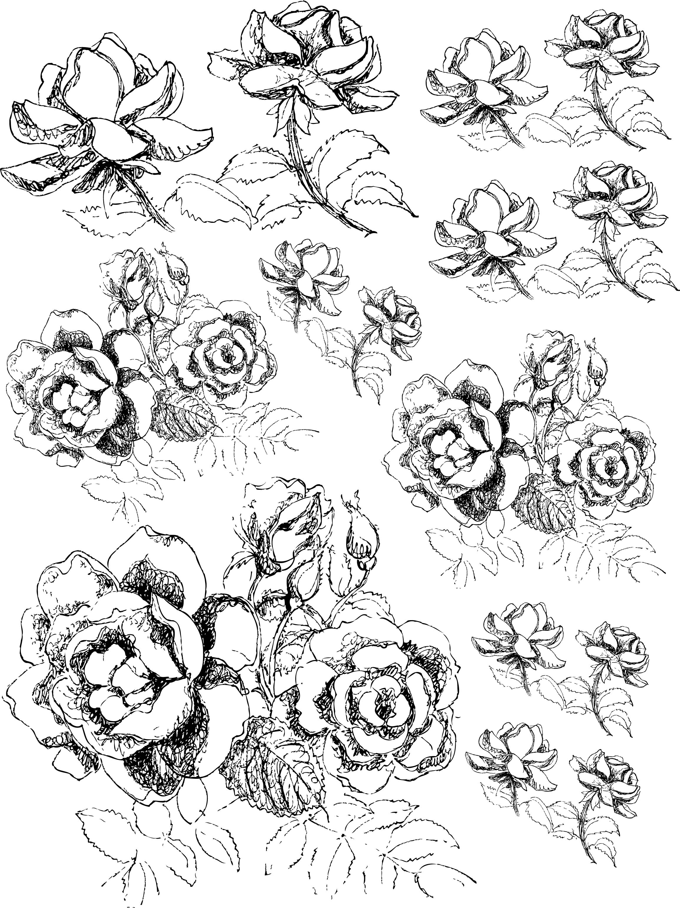 how to draw bushes with pencil